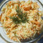 Američka kupus salata coleslaw